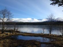 The cairngorms in Spring